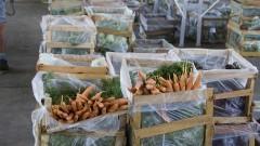 Legumes para comercialização no Pavilhão MLP do Ceagesp. Foto: Marcos Santos/USP Imagens