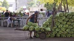 Trabalhador repõe mercadorias no Mercado Livre do Produtor (MLP) do Ceagesp. Foto: Marcos Santos / USP Imagens