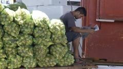Trabalhador do Ceagesp faz uma pausa para ler jornal recostado em sacos com milho verde. Foto: Marcos Santos / USP Imagens