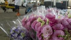 Detalhe para os arranjos de flores vendidos no Ceagesp em São Paulo, no Pavilhão MLP. Foto: Marcos Santos / USP Imagens