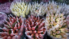 Maços de rosas vendidos na Feira de Flores no Pavilhão MLP do Ceagesp. Foto: Marcos Santos / USP Imagens