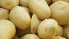 Batatas em um sacolão. Foto: Marcos Santos/USP Imagens