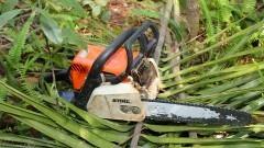 Motosserra usada para cortar as palmeiras invasoras. Foto: Marcos Santos/USP Imagens