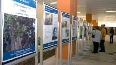 Exposição dos 40 anos de fundação do Instituto de Psicologia da USP. Foto: Cecília Bastos/Jornal da USP