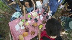 Detalhe da mesa de degustação de plantas alimentícias não convencionais durante o II Encontro de Iniciativas Socioambientais: Do Evento ao Movimento (II EISA). Foto: Marcos Santos/USP Imagens