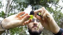 Gui Reis (EACH/USP) explica como identificar plantas alimentícias não convencionais. Foto: Marcos Santos/USP Imagens