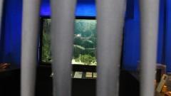 O Museu Oceanográfico tem como objetivo difundir a ciência dos oceanos e as pesquisas desenvolvidas pelo Instituto Oceanográfico. Foto:Marcos Santos/USP imagens