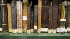 Detalhe de livros enfileirados em estante do acervo da Nova Biblioteca da Faculdade de Educação (FEUSP). Foto: Marcos Santos / USP Imagens