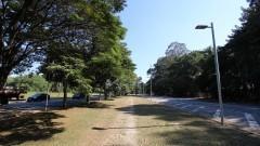 """Detalhe do meio fio da """"Avenida da Raia"""" (Avenida Professor Mello Moraes) próximo à Raia Olímpica. Foto: Marcos Santos / USP Imagens"""