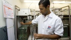 Aluno prepara os tanques com alevinos para experimento no Departamento de Fisiologia. Foto: Marcos Santos/USP Imagens