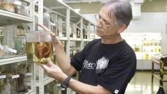 Giovaldo Serafim correia do Museu de Anatomia. Foto: Marcos Santos/USP Imagens
