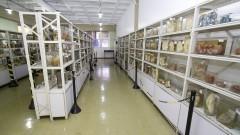 Museu de Anatomia Humana - MAH. Foto: Marcos Santos/USP Imagens