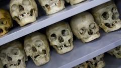 Crânios. Museu de Anatomia Humana - MAH. Foto: Marcos Santos/USP Imagens