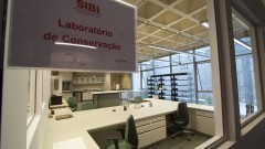 Vista do Laboratório de Conservação de obras Raras e Especiais do SiBi. O laboratório iniciou suas atividades à partir da coleção Cervantina (Miguel de Cervantes Saavedra). Foto: Marcos Santos/USP Imagens