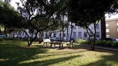 Detalhe de praça com bancos, gramado e árvores em primeiro plano e ao fundo o prédio da Faculdade de Saúde Pública (FSP). Foto: Marcos Santos / USP Imagens
