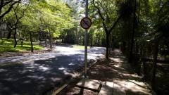 Descida da rua do Matão no Campus da Capital. Foto: Marcos Santos/USP Imagens