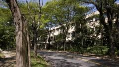 Vista geral da Rua do Matão no Campus da Capital. Foto: Marcos Santos/USP Imagens