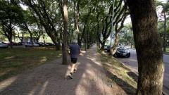 Senhor se exercita na Avenida da Universidade. Foto: Marcos Santos/USP Imagens