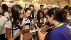 Grupo de estudantes acompanham a explicação de participante da 12ª edição da Feira Brasileira de Ciências e Engenharia (Febrace). Foto: Marcos Santos / USP Imagens