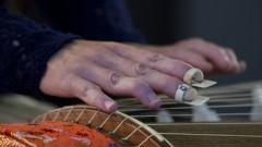 Detalhe da mão e do instrumento okoto durante recital de música japonesa no  Auditório Olivier Toni do Departamento de Música. Foto: Marcos Santos/USP Imagens