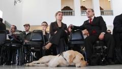 Lançamento do Programa Cão-Guia