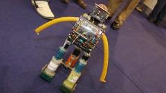 Detalhe do projeto robô-sacata na 8ª Feira Brasileira de Ciências e Engenharia (Febrace 2010). Foto: Marcos Santos/USP Imagens
