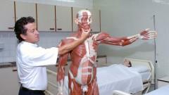 Pessoa segura réplica do corpo humano utilizado no laboratório da Escola de Enfermagem de Ribeirão Preto (EERP - USP), no campus de Ribeirão Preto, interior de São Paulo. Foto: Marcos Santos.