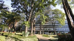 Prédio da Escola de Engenharia de São Carlos (EESC). Foto: Marcos Santos/USP Imagens