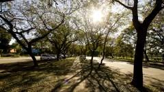 Avenida Professor Melo Morais. Foto: Marcos Santos/USP Imagens