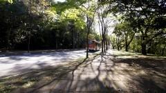 Rua do Matão. Foto: Marcos Santos/USP Imagens