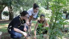 Adriana Igino, Ana maria Bertolini e Bruna Pinhati. FSP - Faculdade de Saúde Pública. Mutirão da horta. 2017/02/23 Foto: Marcos Santos/USP