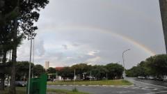Arco Íris no campus. Foto: Cecília Bastos/Jornal da USP