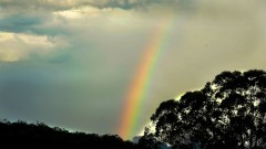 Detalhe de arco-iris. Foto: Cecília Bastos/Jornal da USP