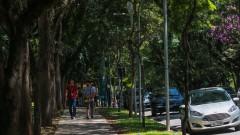 Pessoas caminhando no Campus - Recepção no dia da Matrícula dos Ingressantes pela FUVEST. 2017/02/13 Foto: Luenne Neri/USP Imagens