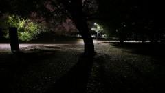 Vista noturna da Praça do Relógio. Foto: Marcos Santos/USP Imagens