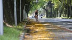 Ciclovia da Cidade Universitária. Foto: Marcos Santos/USP Imagens