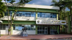 Faculdade de Medicina Veterinária e Zootecnia (FMVZ)