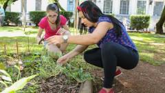 Giovanna Maurelli e Géssica Vaz Franco. FSP - Faculdade de Saúde Pública. Mutirão da horta. 2017/02/23 Foto: Marcos Santos/USP Imagens
