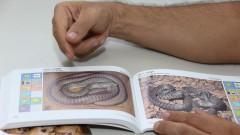 reg. 096-16 Serpentes do Cerrado. Professor Cristiano de Campos Nogueira. 01/04/2016 Foto: Marcos Santos/Jornal da USP