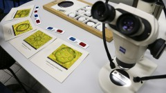 reg. 105-16 IO. Microscópio com fósseis e sobre a materiais do projeto Faça Fóssil. Visita de Escolas ao Instituto Oceanográfico - IOUSP. 27/04/2016 Foto: Marcos Santos