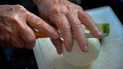 Mãos da terceira idade. foto Cecília Bastos