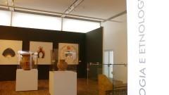 MAE Coleção Ciência e Arte. Exposição no Centro Universitário Maria Antonia reúne obras de diferentes museus da USP. Foto: Cecília Bastos/Jornal da USP