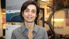 Maria Isabel Landim, Curadoria da coleção museográfica do Museu de Zoologia. Foto: Marcos Santos/USP Imagens