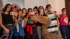 Visita de alunos ao  Museu Zoologia