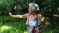 Páscoa da Conceição fazendo exercícios no jardim do condomínio de sua casa. foto Cecília Bastos
