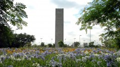 Praça do relógio. Foto Jorge Maruta/ Jornal da USP