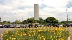 Flores no Campus da USP. Foto Jorge Maruta/Jornal da USP