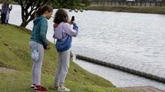 Aplicativo BioExplorer. SGA - Superintendência de Gestão Ambiental. Semana do Meio Ambiente. Alunos da Escola de Aplicação participam das atividades. 2017/06/09 Foto: marcos Santos/USP Imagens