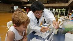 Detalhe de monitor e criança interagindo com microscópio durante oficina no Ciclo Multidisciplinar 1 (na Faculdade de Arquitetura e Urbanismo) durante a Virada Científica 2015 (segunda edição) realizada dias 17 e 18 de outubro. Foto: Marcos Santos/USP Imagens