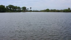 Lago da FZEA